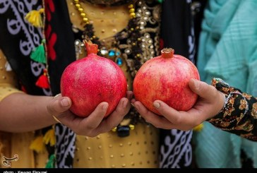 نخستین جشنواره انار اورامان به روایت تصویر