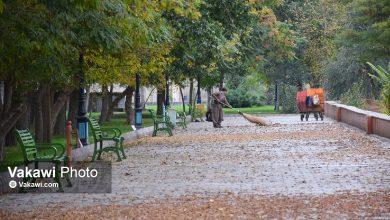 هزاران نقش پاییزی بر بوم شهر