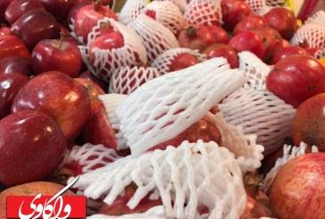 <span style='color:black;font-size:14px;'>در تدارک یلدا</span><br>گزارش میدانی واکاوی از قیمت میوه و آجیل در شهرستان سقز