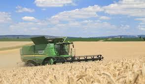 پیش فروش گندم با قیمت بالاتر از خرید تضمینی؛ از شایعه تا واقعیت