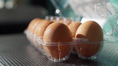 تخممرغ بسته بندی شده